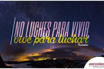 frase 25 de nov no-luches
