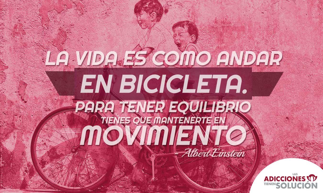 frase 1 de dic bicicleta