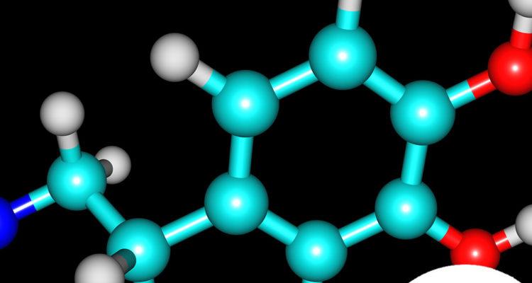 cuales-son-los-tipos-de-neurotransmisores